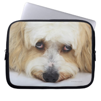 bichonのfrise犬のユーモアのあるなクローズアップ ラップトップスリーブ
