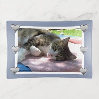 Big Boy Cat on Table Trinket Tray トリンケットトレー