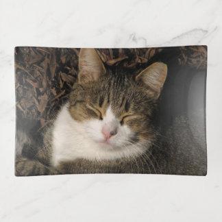 Big Boy Cat Sleeping Trinket Tray トリンケットトレー