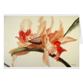 Big_Flower.png カード