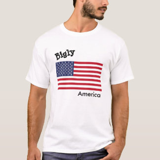 BiglyアメリカメンズTシャツ Tシャツ