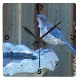 Birdbathの訪問 スクエア壁時計