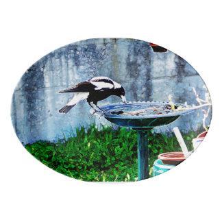 birdbath 磁器大皿
