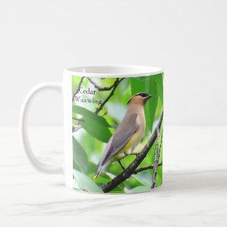 BirdingCollectibles著ヒメレンジャクのマグ コーヒーマグカップ
