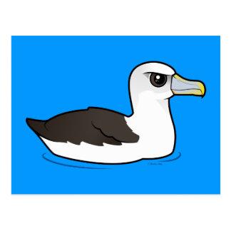 Birdorableの内気なアホウドリ ポストカード