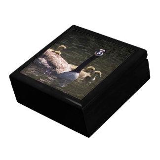 Birds Wildlifeカナダのガチョウのがちょうの子のママのギフト用の箱 ギフトボックス
