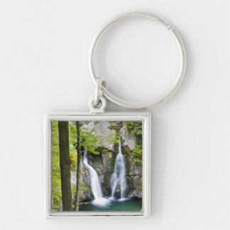 Bishの強打の滝の州立公園のBishの強打の滝 キーホルダー