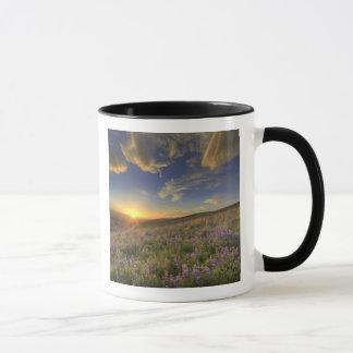 Bitterroot山上の日没および広大 マグカップ