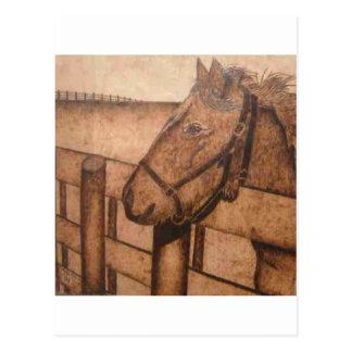 bk wb (3).PNGの馬の木製の焼却 ポストカード