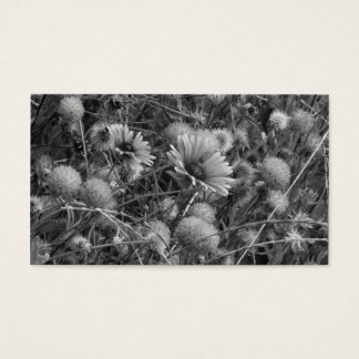 black&の白の野生花 名刺