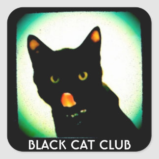 Black Cat Club small stickers スクエアシール