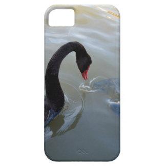 Black_Swanの_Fish_Food、_ iPhone SE/5/5s ケース