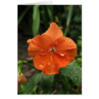 Blank_Orangeの雨滴 カード