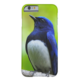 blue bird barely there iPhone 6 ケース