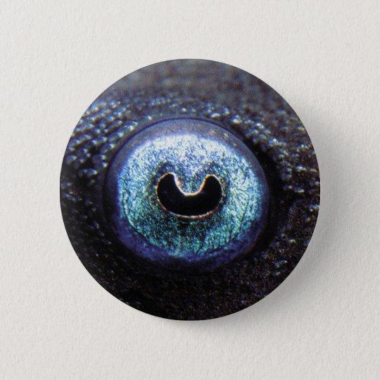 Blue Eye Plecoの缶バッジ 5.7cm 丸型バッジ