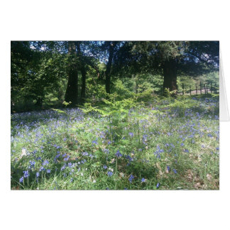 Bluebellの森 カード