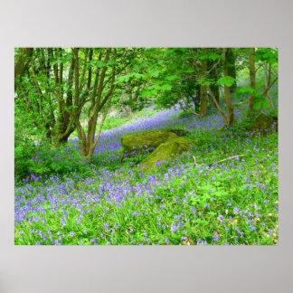 Bluebellの森 ポスター