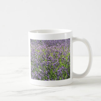 BLUEBELL木9 コーヒーマグカップ