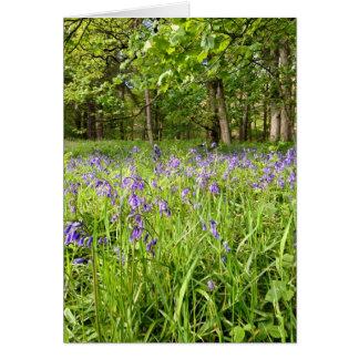 Bluebell木 カード
