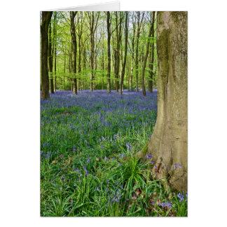 Bluebell木-挨拶状 カード
