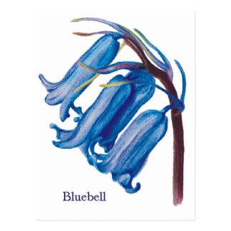 Bluebell ポストカード