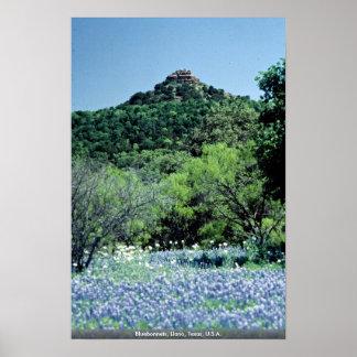 Bluebonnets、Llano、テキサス州、米国 ポスター