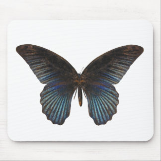 BlueSwallowTailの蝶 マウスパッド