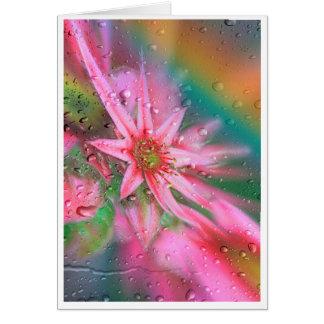Blume vorm Regenbogen カード