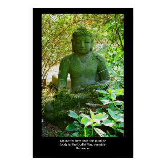 Bodhiの心 ポスター