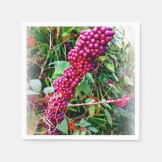 Bokタワーの庭フロリダのアメリカ人Beautyberry スタンダードカクテルナプキン