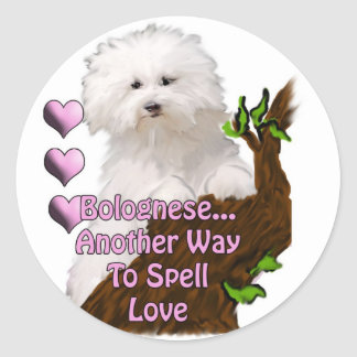 BologneseまたはHavaneseの子犬 ラウンドシール