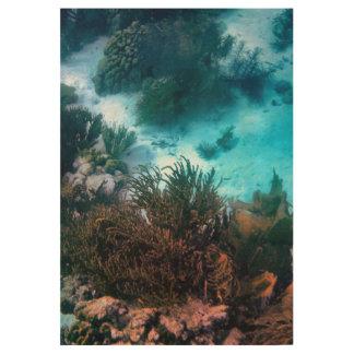 Bonairean礁 ウッドポスター