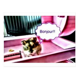 Bonjourのハムスター ポストカード