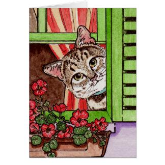 Bonjour猫 カード