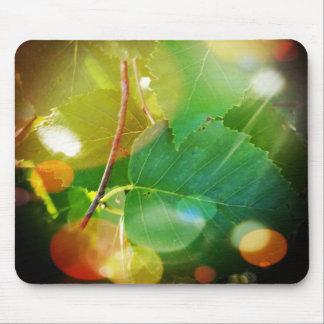 Boothbayのテーマのマウスパッドの神秘的な葉 マウスパッド