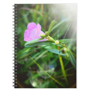 Boothbayのノート(80ページ)の小さい紫色の開花 ノートブック
