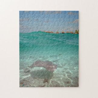 Bora Boraのジグソーパズルで水中アカエイ ジグソーパズル
