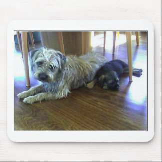 Border_Terrier_brothers2 マウスパッド