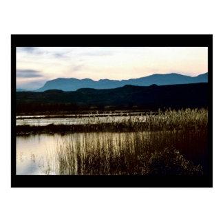 Bosque delアパッシュの日没 ポストカード