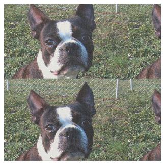 Boston_Terrier.png ファブリック