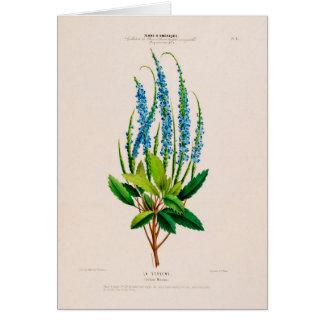 Botanical Greeting Card カード