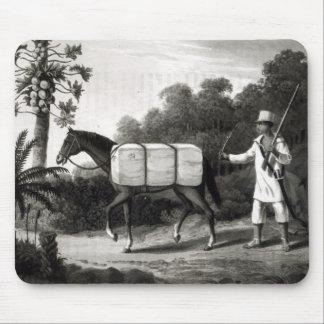 「Brazilの旅行からの綿のキャリア、 マウスパッド