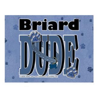 Briardの男 ポストカード