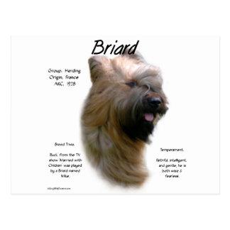 Briardの(黄褐色の)歴史のデザイン ポストカード