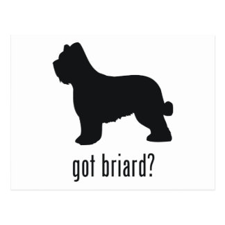 Briard ポストカード