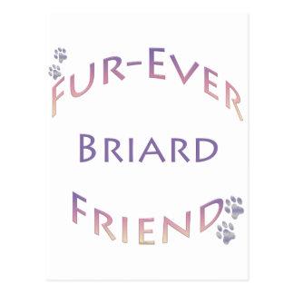 Briard Furever ポストカード