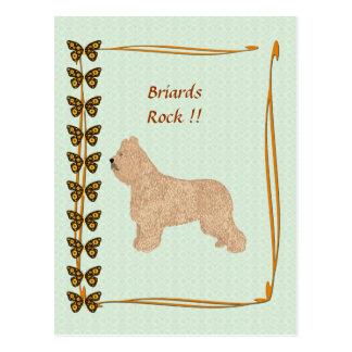 Briardsの石!! ブラウンの蝶 ポストカード