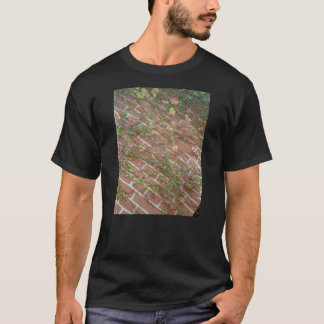 brick & ivy tシャツ