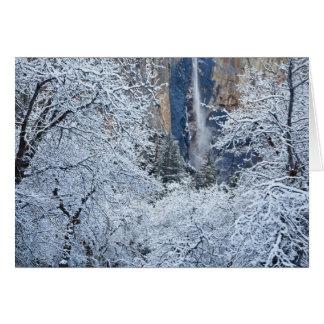 Bridalveilの下の木の新しい降雪 カード