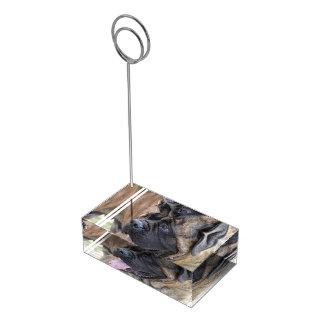 Brindleマスティフ テーブルカードホルダー